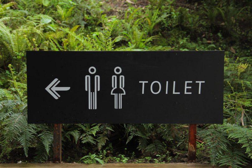 Solution pour déboucher les WC sans vous salir les mains