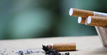 megot cigarette
